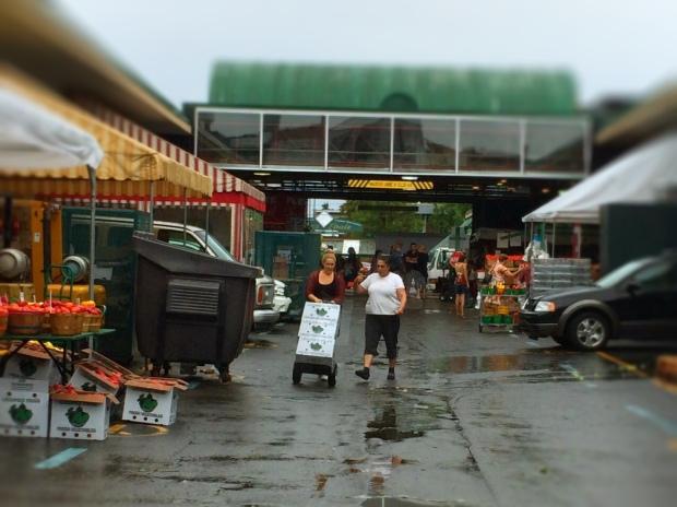 Jean Talon Market Montreal