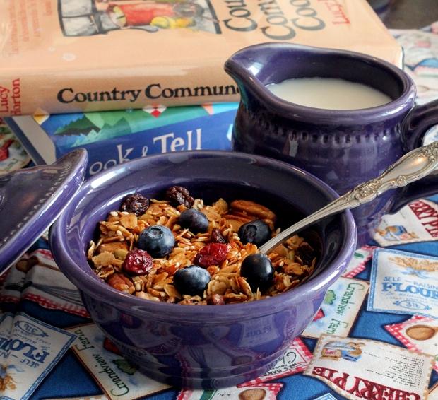 Book review 10 superb granola recipes cool food dude 10 superb granola recipes forumfinder Images