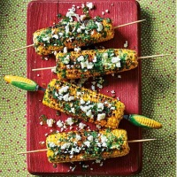 Cookbook​ Review: Posh Kebabs